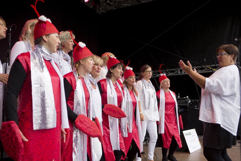 Gothia Show Chorus